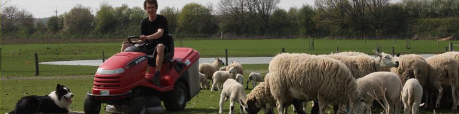 brecht-en-schapen-2009-012